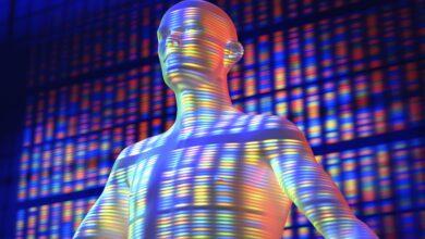 Introduction au projet sur le génome humain