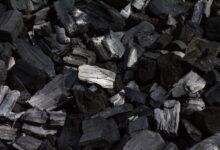 Le charbon en bref