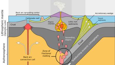 Le naufrage des plaques tectoniques