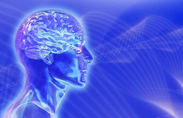 Tête avec cerveau sur fond d'ondes cérébrales. (AlienCat / Adobe)
