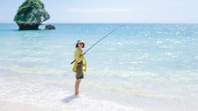 Longévité et vieillissement en bonne santé dans les zones bleues d'Okinawa