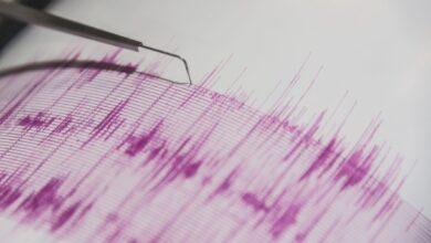 Mesure de l'intensité des tremblements de terre à l'aide d'échelles sismiques