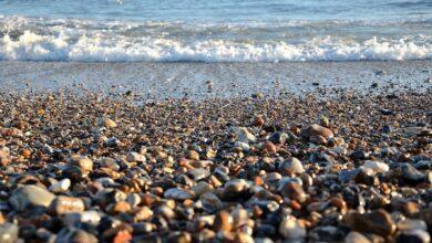 Où trouver des types spécifiques de roches et de minéraux