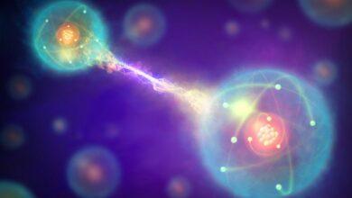 Paradoxe de la RPE en physique - Définition et explication