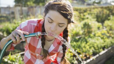 Peut-on boire l'eau d'un tuyau ?
