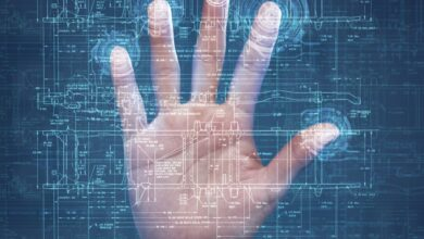 Pourquoi avons-nous des empreintes digitales ?