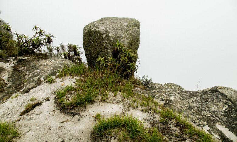 Quatre critères pour identifier une roche