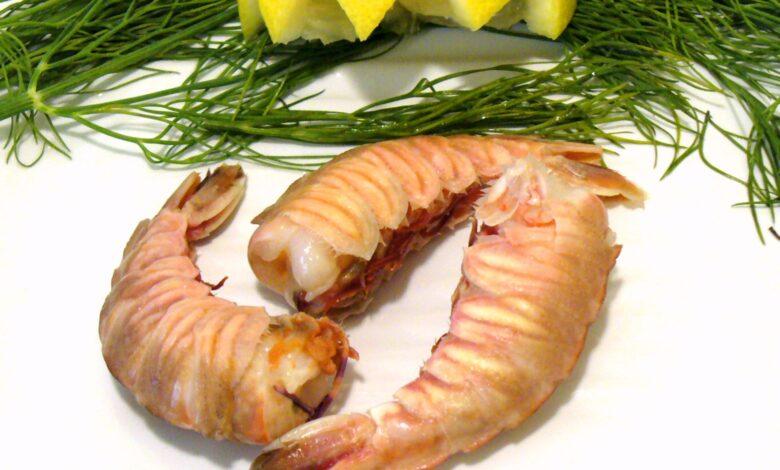 Que sont les crevettes de roche et comment les cuisiner ?