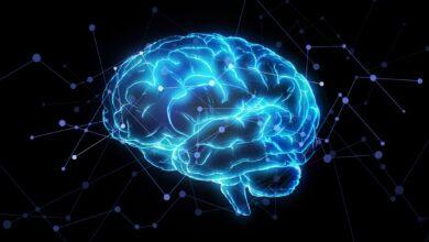 Photo de Quel est l'effet de récence en psychologie ?