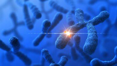 Qu'est-ce que la mutation génétique et comment elle fonctionne