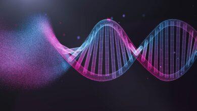 Qu'est-ce que la technologie de l'ADN recombinant ?