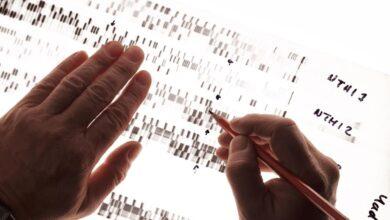 Qu'est-ce que le polymorphisme génétique ?