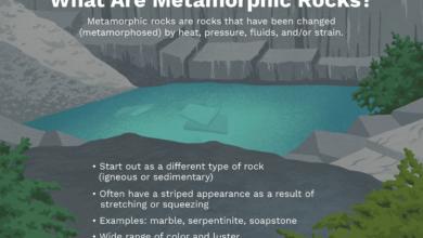 Qu'est-ce qui rend les roches métamorphiques si uniques ?