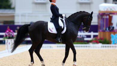 Règles olympiques en matière d'équitation, jugement et officiels