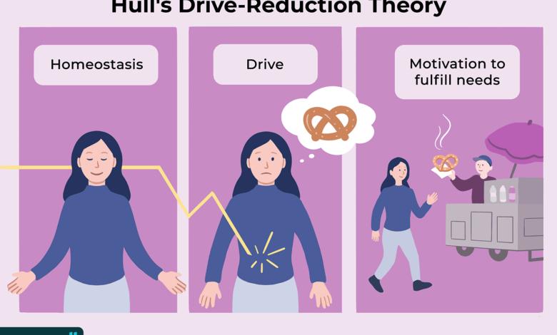 Théorie de la réduction de la conduite et comportement humain