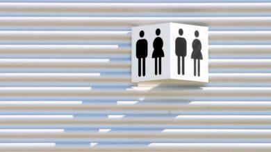 Théorie des schémas de genre et rôles dans la culture