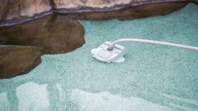 Types de nettoyeurs de piscines