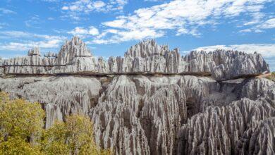 Types de roches sédimentaires