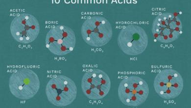 10 acides et structures chimiques communs