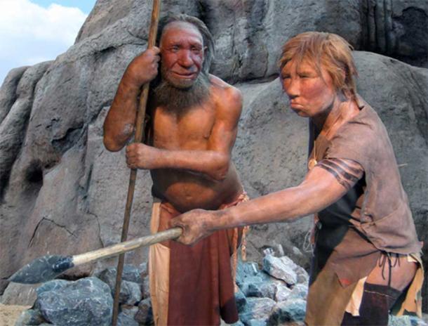 Homo neanderthalensis mâle et femelle au Musée de Neandertal, Mettmann, Allemagne. (UNiesert/Frank Vincentz/ CC BY SA 3.0)
