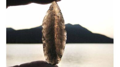 Obsidian projectile point sourced to Batza Tena, Alaska.