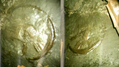 Two photos of the ancient wheel.