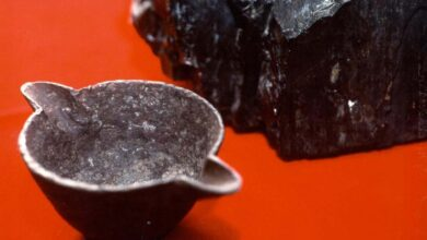 This iron pot is allegedly an OOPArt found in coal.