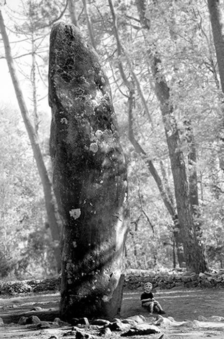 Légende du menhir de Carnac : Un des 80 000 menhirs de la région de Carnac. Image de Freddy Silva