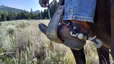 A cowboy boot in a horse's stirrup.