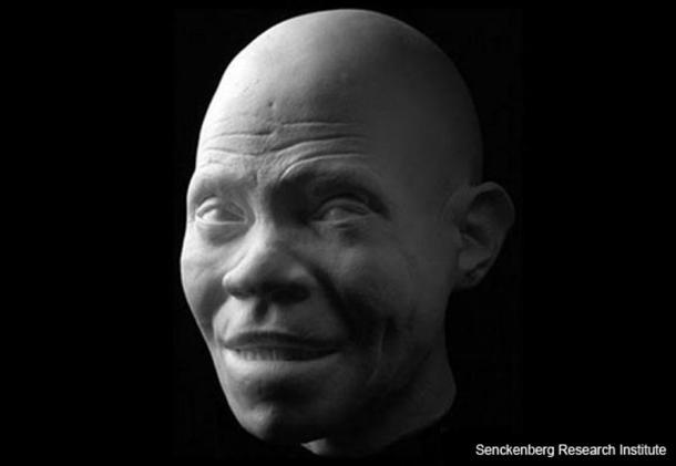 Modèle d'un des premiers membres de l'Homo sapiens, reconstitué à partir de fragments de crâne et de mandibule trouvés dans une grotte en Israël en 1969.  Cette jeune femelle a vécu il y a 100 000 à 90 000 ans.