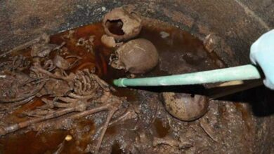 The black sarcophagus was found to contain three skeletons and lots of sewage.