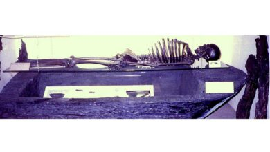 The Gristhorpe Man: A Bronze Age Skeleton