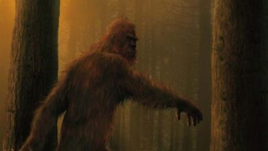 Artistic representation of bigfoot.