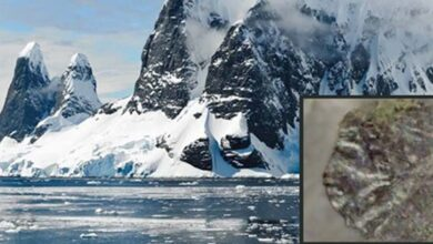 Craggy mountain landscape in Antarctica (Public Domain). Insert: Hominin image Figure 2(a). (Author provided)