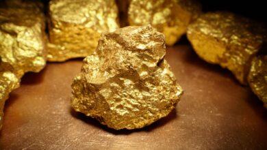 Le scandale de l'or de Bre-X, histoire et ressources
